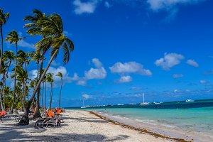 Summer Beach Paradise Caribbean II