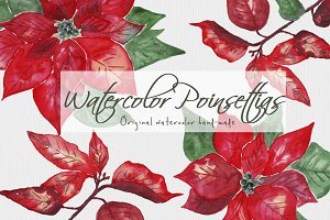 Poinsettias Flowers Christmas Set