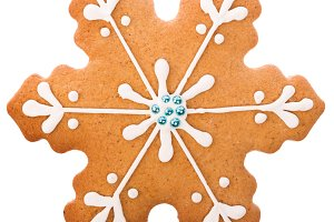 hristmas gingerbread snowflake