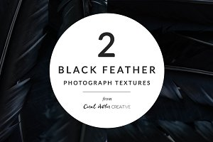 Black Feather Photo Pack