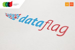 Data Flag - Logo Template