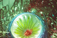 christmas_024.jpg
