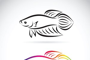 Vector image of a fighting fish.