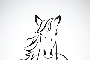 Vector image of a horse head.