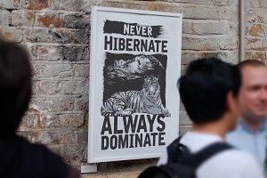 Never Hibernate