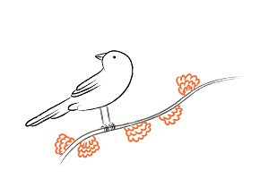 Bird on a branch sketch