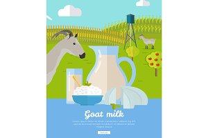 Goat Dairy. Milk Farm