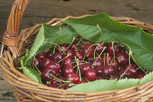 Basket of ripe cherries