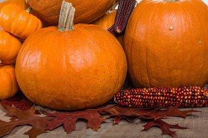 Pumpkins indian corn and fall leaves