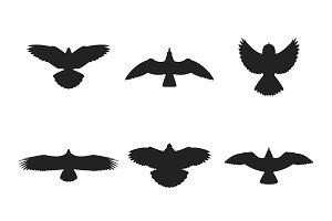 Flying birds iconset