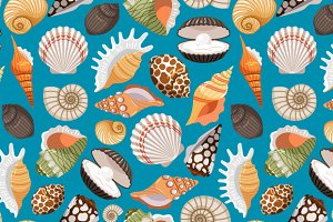 Sea shell pattern