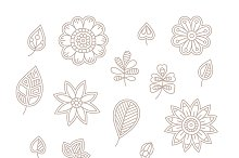 Floral elements lineart