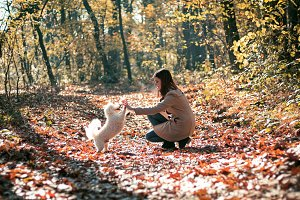 Girl with her dog in autumn forest