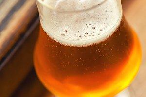 Beer in Autumn