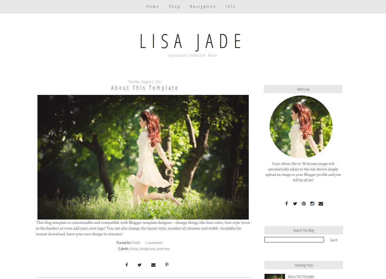 blogger template simple grey jade templates creative market