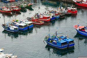 Boats in fishing port.