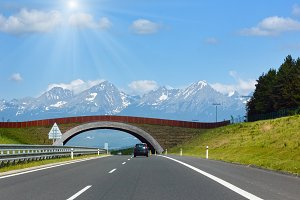 High Tatras spring view and road.
