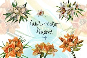 Watercolor flowers set - Lilies