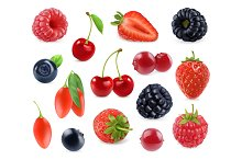 Forest berry. 3d vector icons set