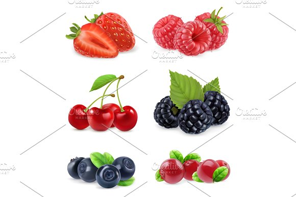 Forest berry. 3d vector icon set - Illustrations