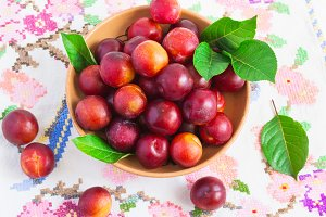 Juicy ripe plums on a white embroidered table cloth