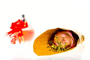 Bouquet of flowers in parchment paper and a gift on a white background