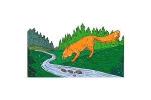 Fox Drinking River Woods Creek