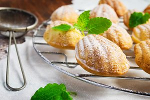 Cookies madeleines freshly baked, selective focus