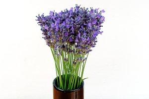 Lavender in a black vase