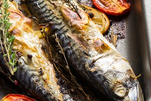 Baked mackerel with tomato and thyme, style rustic