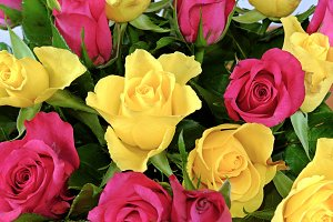 Bouquet of yellow and pink roses