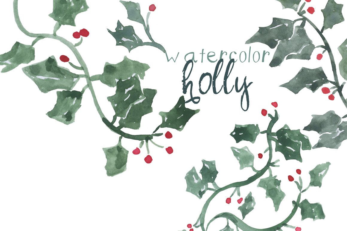 Painted Holly Clip Art