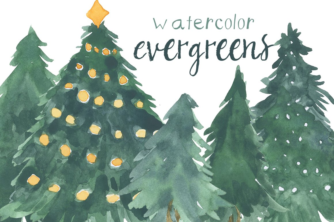 Watercolor Evergreens
