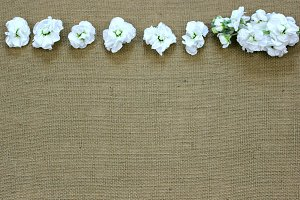 White flowers on Burlap-2