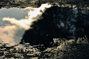 Muddy Water Abstract