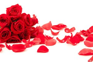 Red roses and petals lying down