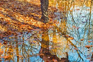 Water Reflection VI