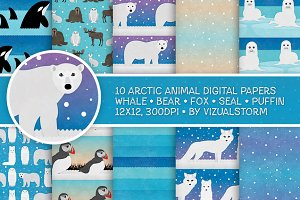 Arctic Animal Patterns