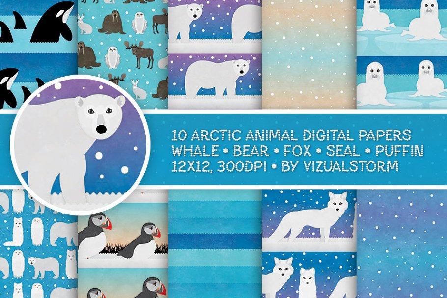 Arctic Animal Patterns