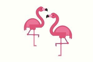 Flamingo vector illustration in flat
