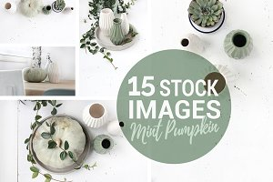 Styled stock photo's, Mint pumpkin