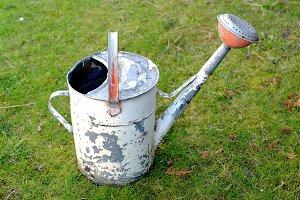 Old tin garden pot