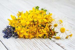 Health herbs