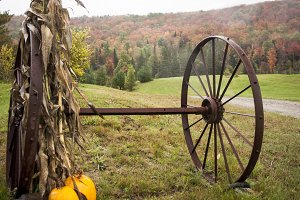 Old Farm Equipment in the Fall