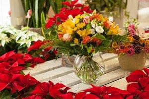Flowers in a flower shop