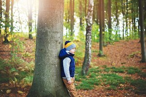 A child nestling tree in the forest
