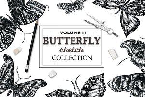 Butterfly sketch collection