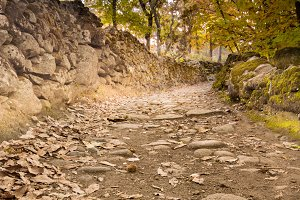 Autumn scenery with road and rocks