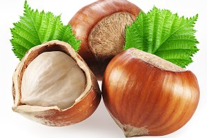Hazelnuts with leaves on a white background. Clipping path.