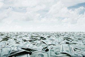 sea cash